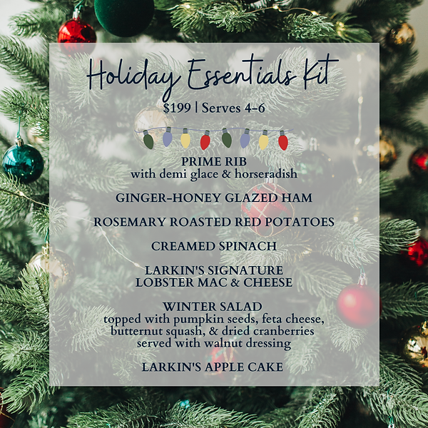 CHRISTMAS ESSENTIALS KIT (1).png