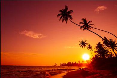 Around the World: Caribbean