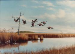 Original-Oil_Geese_Bay-Marsh-Grass
