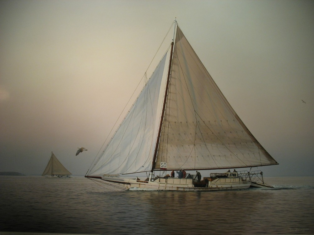 Original-Oil_Skipjack_Kathryn-Vintage