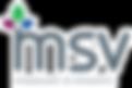msv-logo.png
