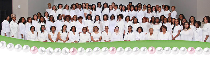 Chapter Photo in White at 2018MIP.jpg