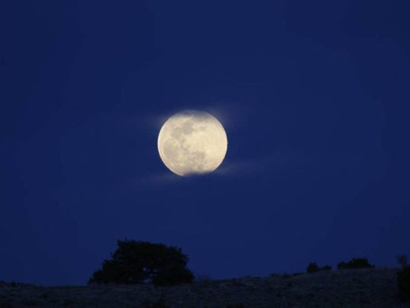 Flash Fiction Winner: By the Light of the Moon