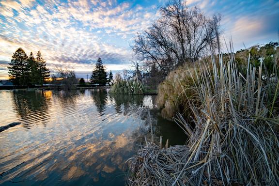 Pixieland Duck Pond