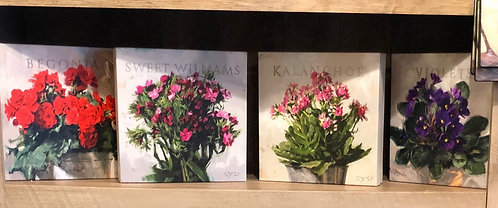 "Darren Gygi - ""Flowers"" Gallery Wrapped Giclee Prints"