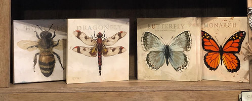 "Darren Gygi - ""Insects"" Gallery Wrapped Giclee Prints"