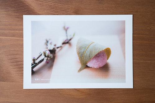 ポストカード 桜餅(3月)