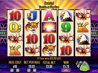 Junle Casino Video Poker