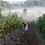 Thumbnail: Soliste Forêt Pinot Noir 2012
