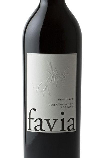 Favia Cerro Sur Red Wine 2016