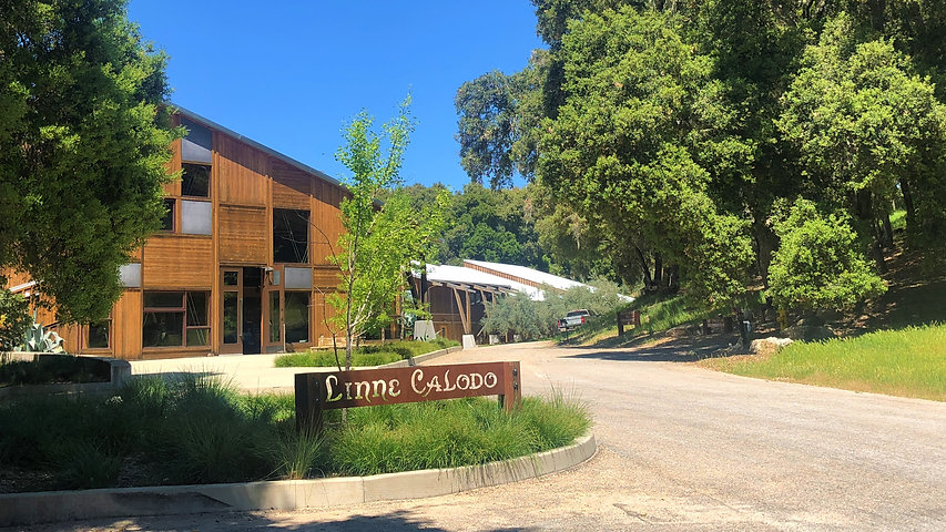 Linne Calodo winery edit.jpg