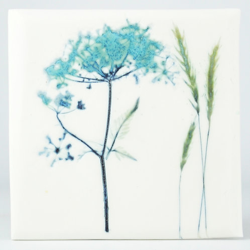 Cow Parsley and Grasses tile