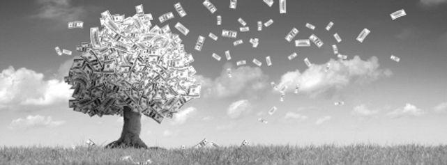 Money-Tree-blowing-leaves-bw.jpg
