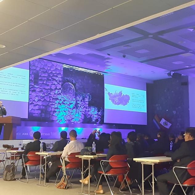 Roberto Obradovich hablando sobre movilidad eléctrica en el Perú, en el evento mercado energía en cuzco, en 2019.