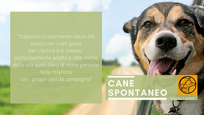 CANE SPONTANEO (2).png
