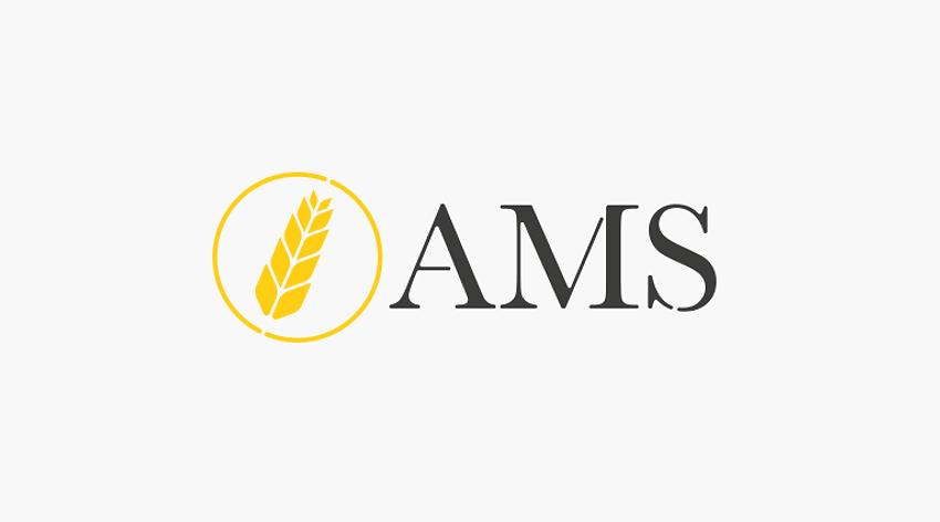 AMS Logo design