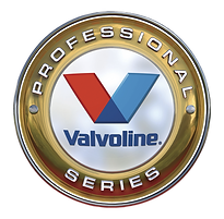 VPS_logo_pn.png
