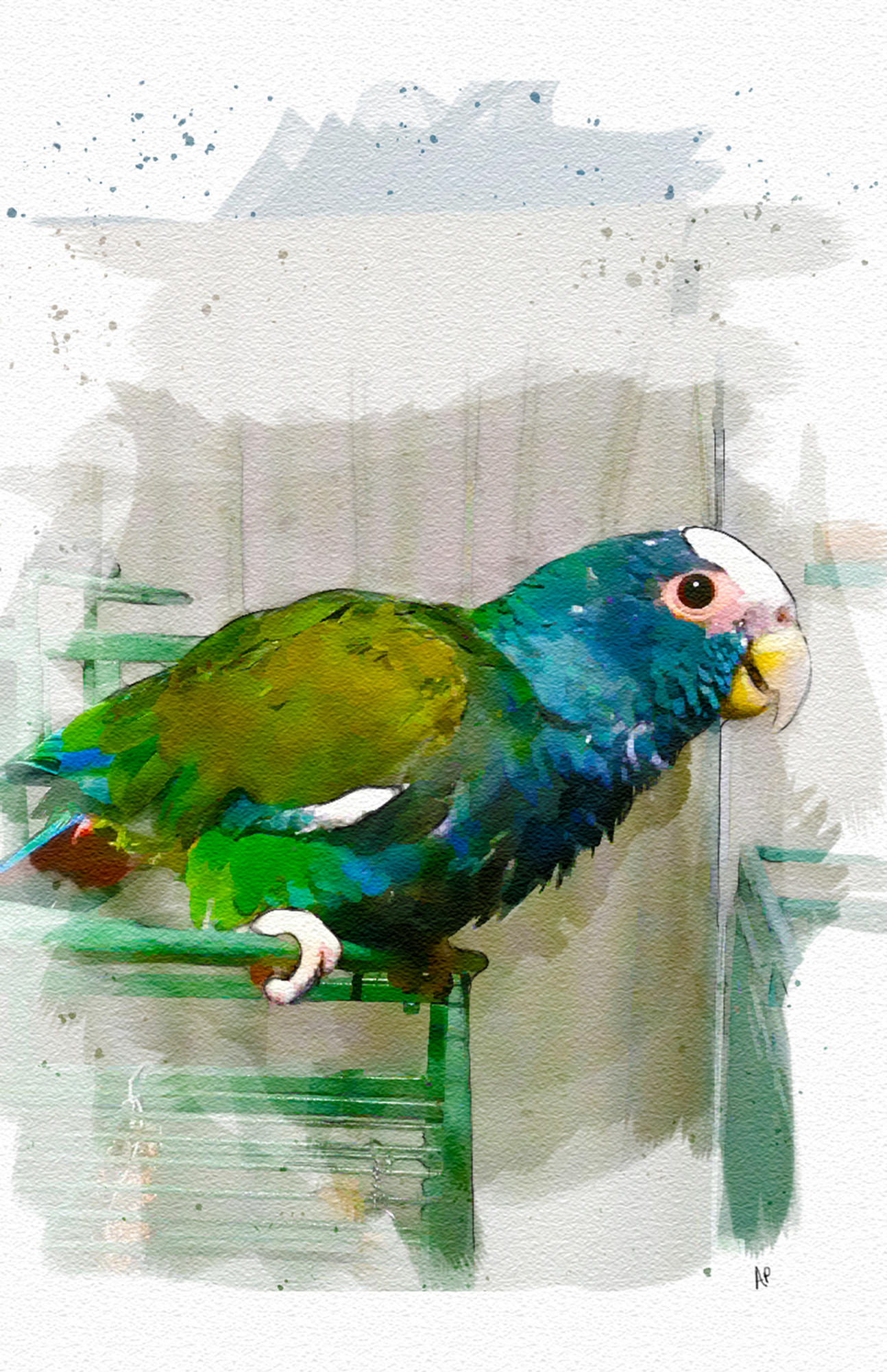 Watercolor_Digital_Parrot_Bird.jpg