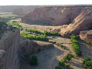 Bamidbar - In the Desert