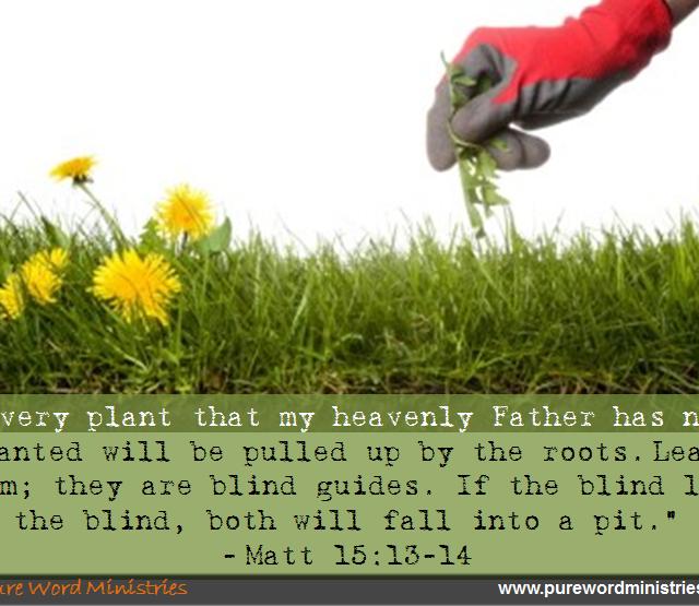 Matthew 15:13-14