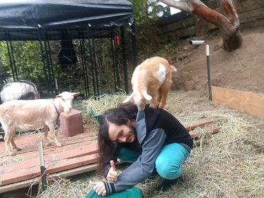D&goat.jpg