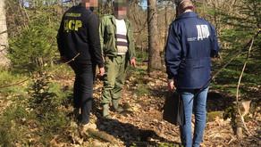 Вінницький лісничий попався на хабарі  у 60 тисяч гривень