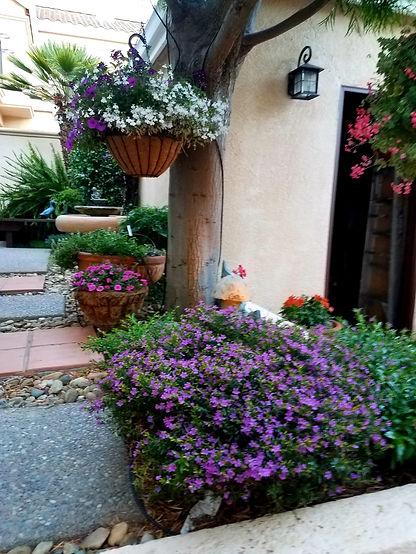 Caesa-Jardin13.jpeg