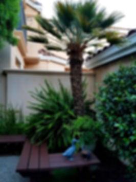 Caesa-Jardin6.jpeg