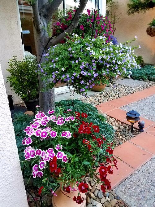 Caesa-Jardin10.jpeg