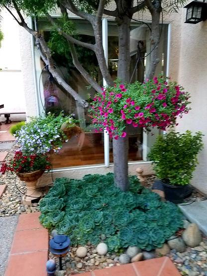 Caesa-Jardin8.jpeg