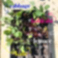 Spring Mayday Garden Plant ID 2 of 3.JPG