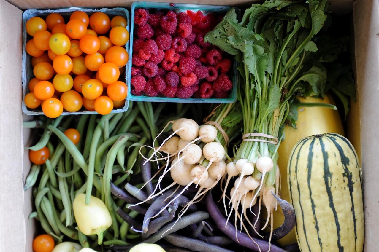 veggie share