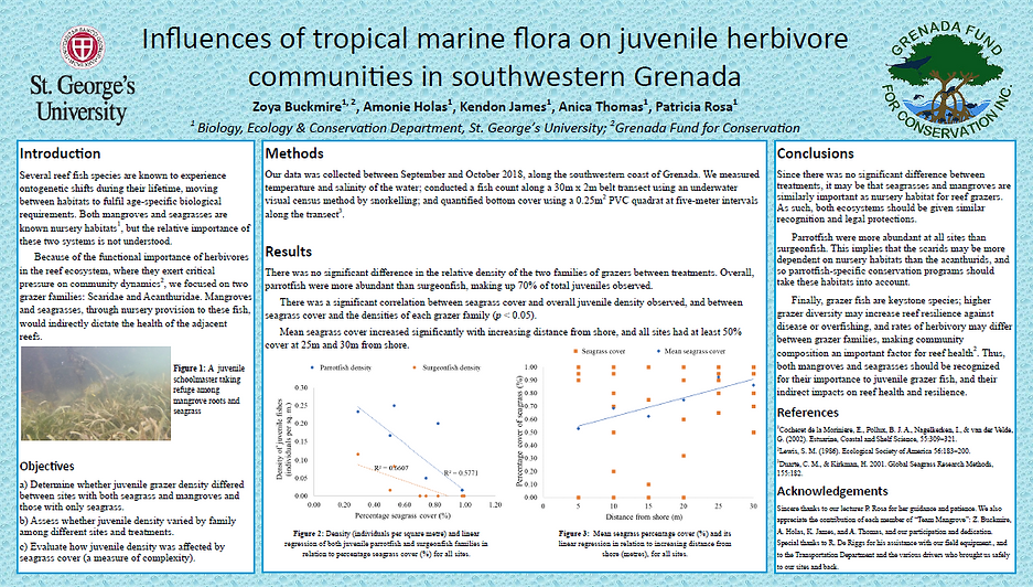 Influences of tropical marine flora on juvenile herbivore communities in southwestern Grenada