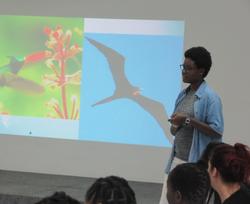 Discussing bird diversity