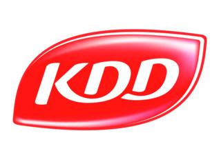 KDD.jpg