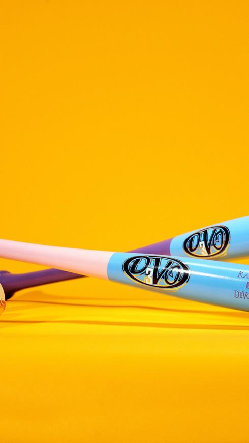 DeVo-Bat-2.jpg
