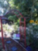 Cathleen's garden.jpeg