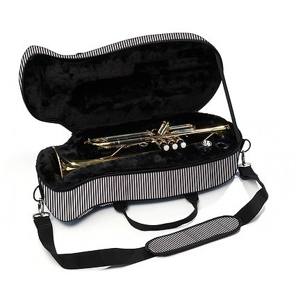 Pinstripe-Trumpet-Case-Open01600.jpg