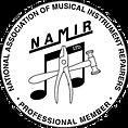 NAMIR Logo.png
