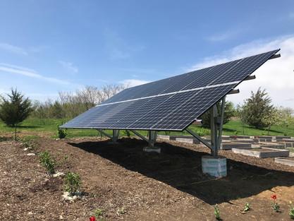 Solar Array in Garden