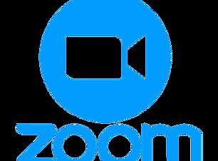 ZoomLogo3.png