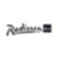 Radisson BLU Logo Kitchoo