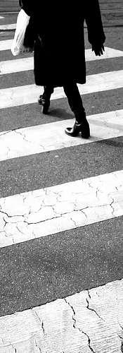 Zebra Crossing Milan   Edward Steel Photography