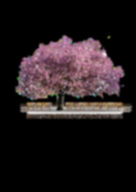 DDS Logo Neu Kopie.png