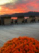 Fall Sunset Mums.jpg
