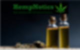 HempNotics Oil Pic with Logo.png