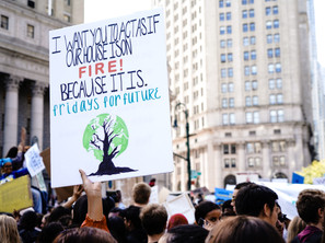 Our education system isn't ready for the climate crisis