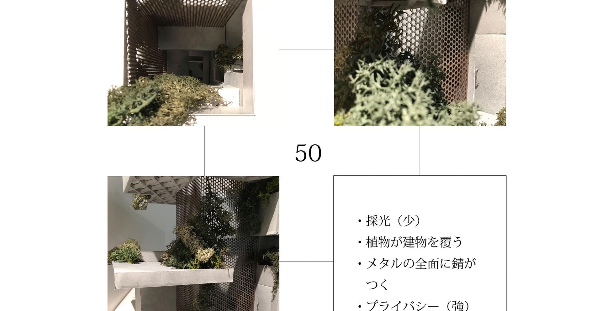 小山大輝 春-6.jpg