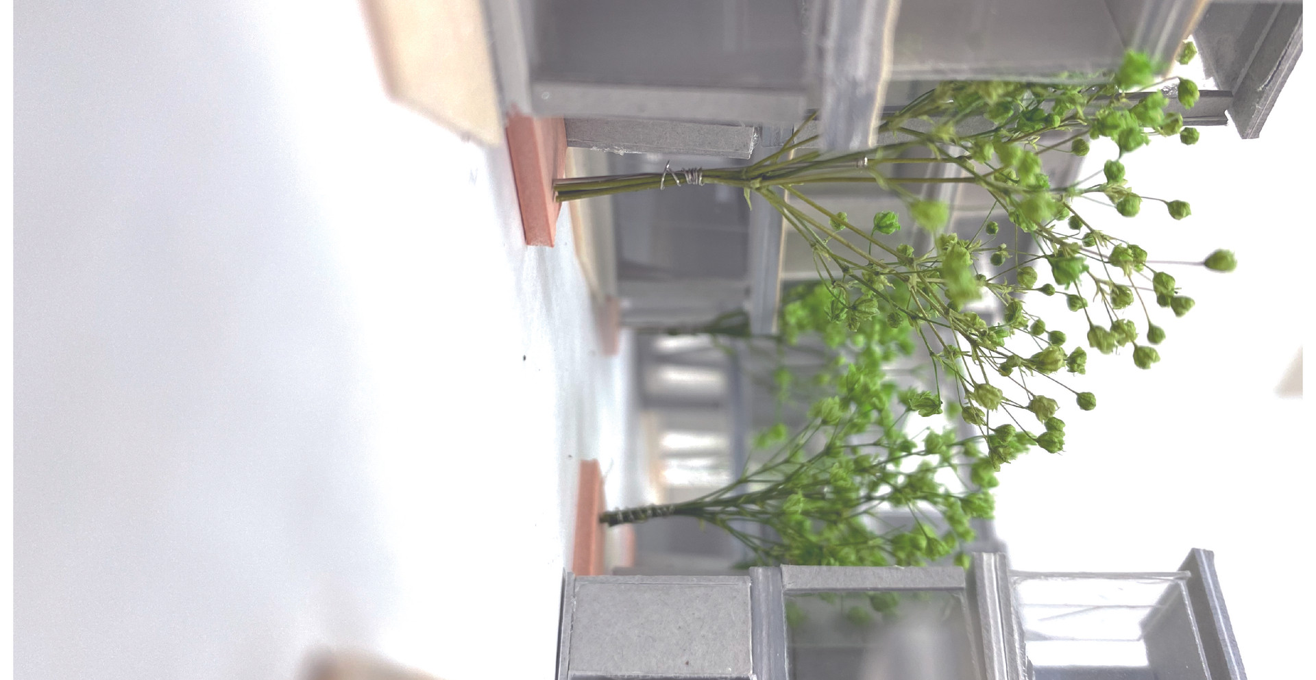 建築展WEB-03.jpg