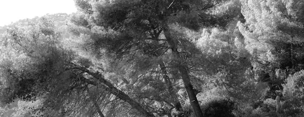 Nu en forêt